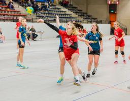 12.11.2017 TuS 2. Mannschaft Damen gegen RSVE Siegen
